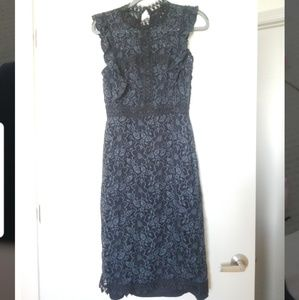 Zara lace navy dress